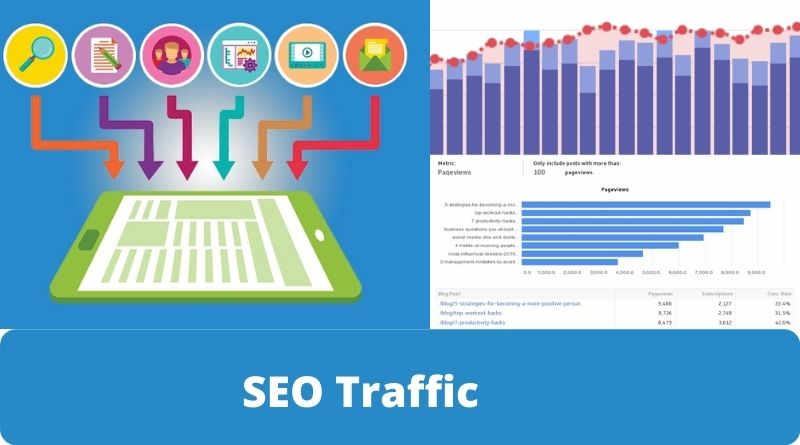 Is SEO  Traffic Really Worth Our Time And Money. True Or False ?