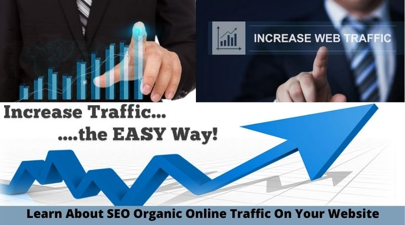 Learn About SEO Organic Online Traffic On Your Website
